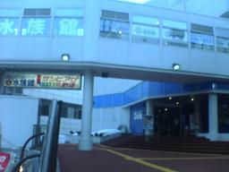 サンピアザ水族館.JPG